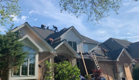 Shingle roof replacement in Willowbrook project photo 4